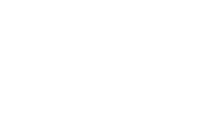 Fine Art Festival - Oak Brook