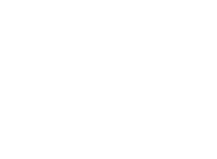 9th Annual Millennium Art Festival
