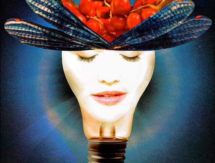 LEA ALBOHER 2D: Digital image 1