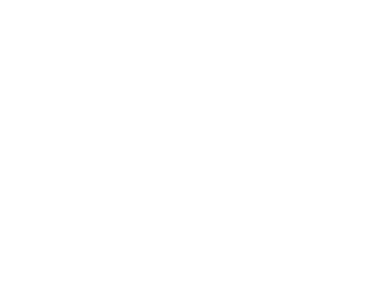 Free Art Fest Boot Camp