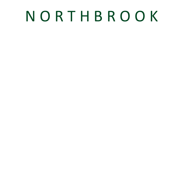 Northbrook Art in the Park